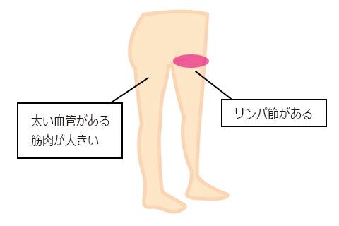 血流で足・下半身が大切な理由