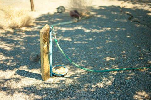 ホースの管のある場所を踏みつぶして、いちど水をせき止めて、その後に足を離す