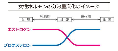 女性ホルモンの分泌量変化のイメージ