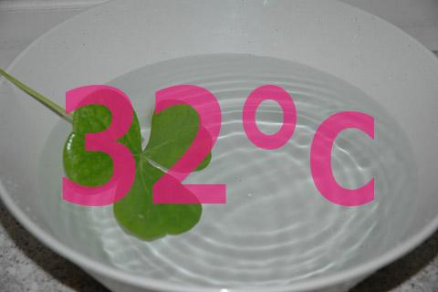洗顔・クレンジングは32度のお湯で