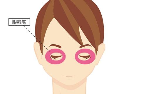 目の下のたるみの原因:眼輪筋の衰え
