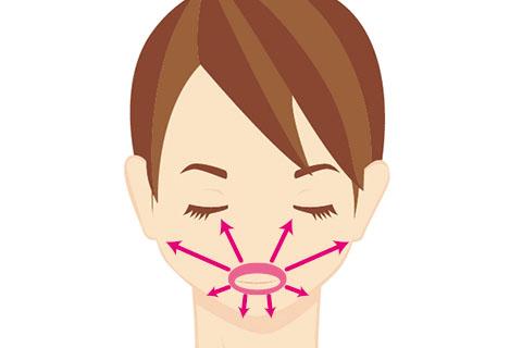 口輪筋は「接続部」