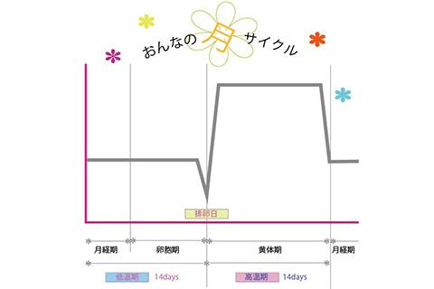 月経周期の基礎体温の変化