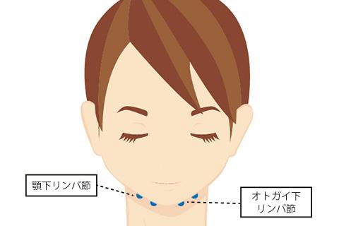 オトガイ下リンパ節と顎下リンパ節の場所