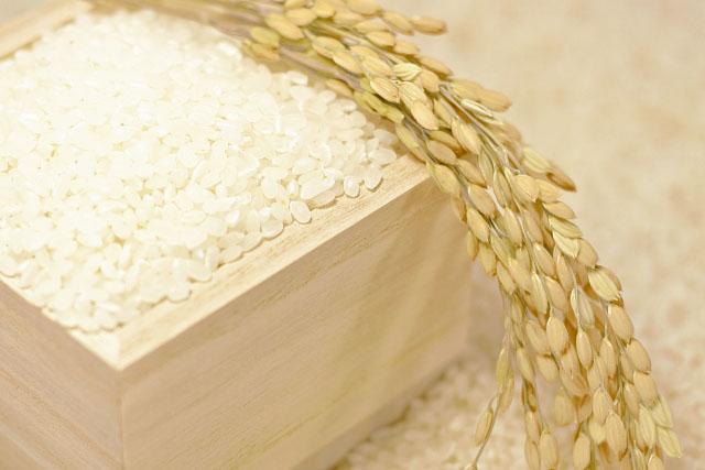 米油のすごい効能!美容効果ばっちりのライスオイルの使い方