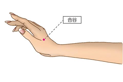 円皮鍼の使い方 美容に良い身体のツボ1