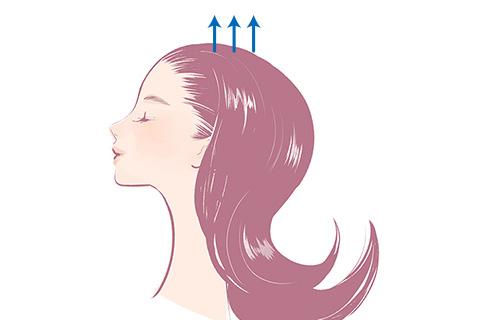 4. 髪の毛を引き上げる