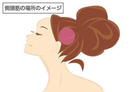 側頭筋の場所のイメージ