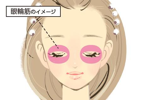 眼輪筋のイメージ