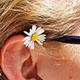耳のマッサージ!超簡単!耳全体を触るだけで健康ボディに!プロに聞く