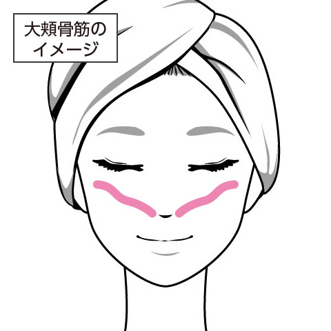 大頬骨筋のイメージ